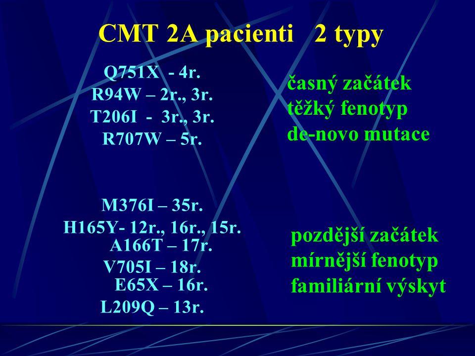CMT 2A pacienti 2 typy Q751X - 4r. R94W – 2r., 3r. T206I - 3r., 3r. R707W – 5r. M376I – 35r. H165Y- 12r., 16r., 15r. A166T – 17r. V705I – 18r. E65X –