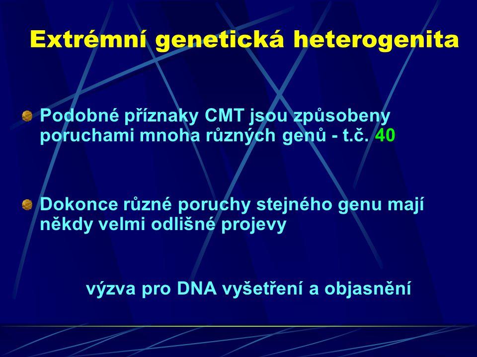 Extrémní genetická heterogenita Podobné příznaky CMT jsou způsobeny poruchami mnoha různých genů - t.č. 40 Dokonce různé poruchy stejného genu mají ně