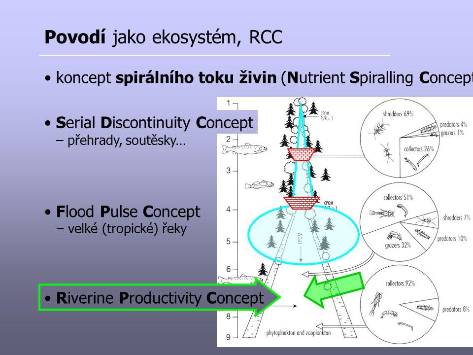 Povodí jako ekosystém, RCC koncept spirálního toku živin (Nutrient Spiralling Concept) Serial Discontinuity Concept Flood Pulse Concept – velké (tropi