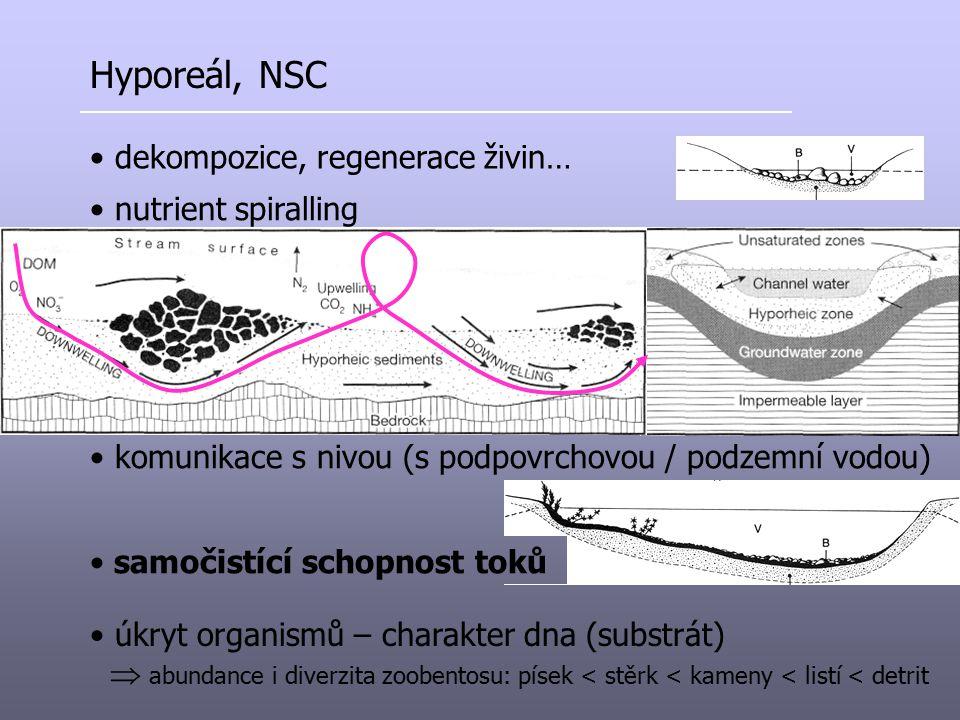 úkryt organismů – charakter dna (substrát)  abundance i diverzita zoobentosu: písek < stěrk < kameny < listí < detrit Hyporeál, NSC dekompozice, rege