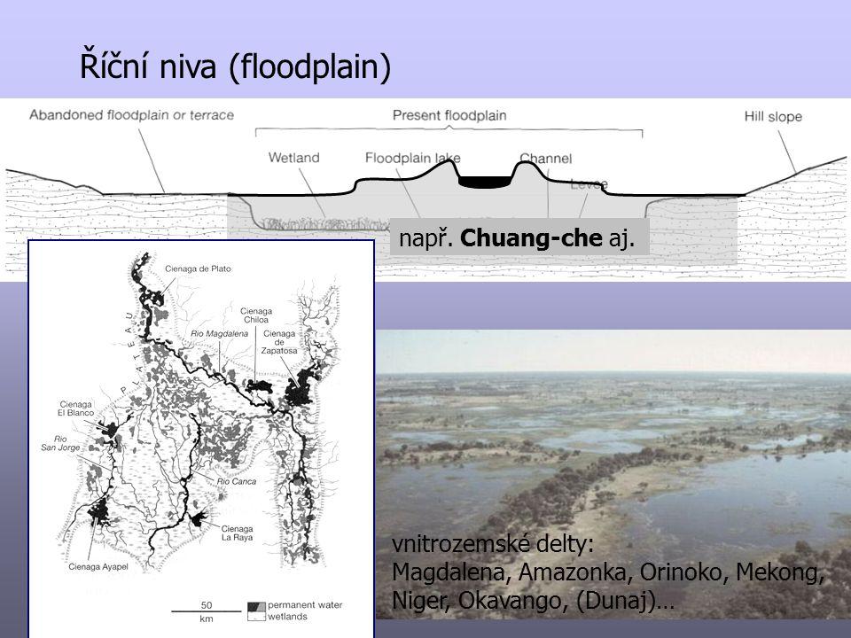 Říční niva (floodplain) např. Chuang-che aj. vnitrozemské delty: Magdalena, Amazonka, Orinoko, Mekong, Niger, Okavango, (Dunaj)…