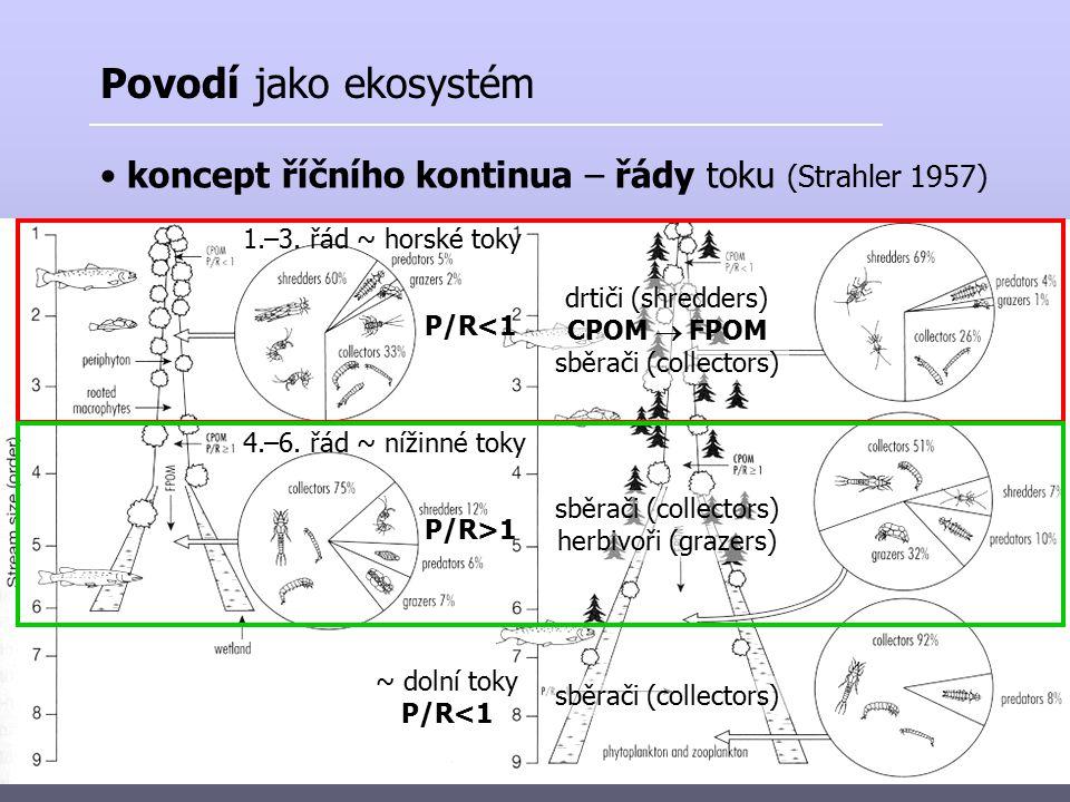 zonace toků (Frič 1872) : pstruhové pásmo (torentilní) lipanové pásmo (torentilní) parmové pásmo (fluviatilní) cejnové pásmo (fluviatilní) Povodí jako