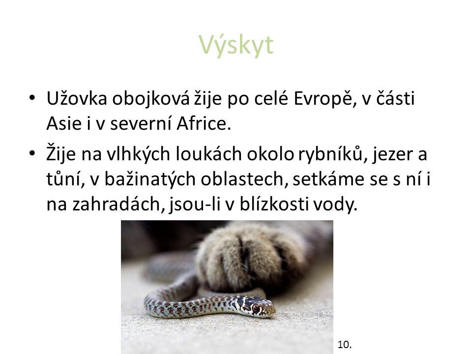 Výskyt Užovka obojková žije po celé Evropě, v části Asie i v severní Africe.