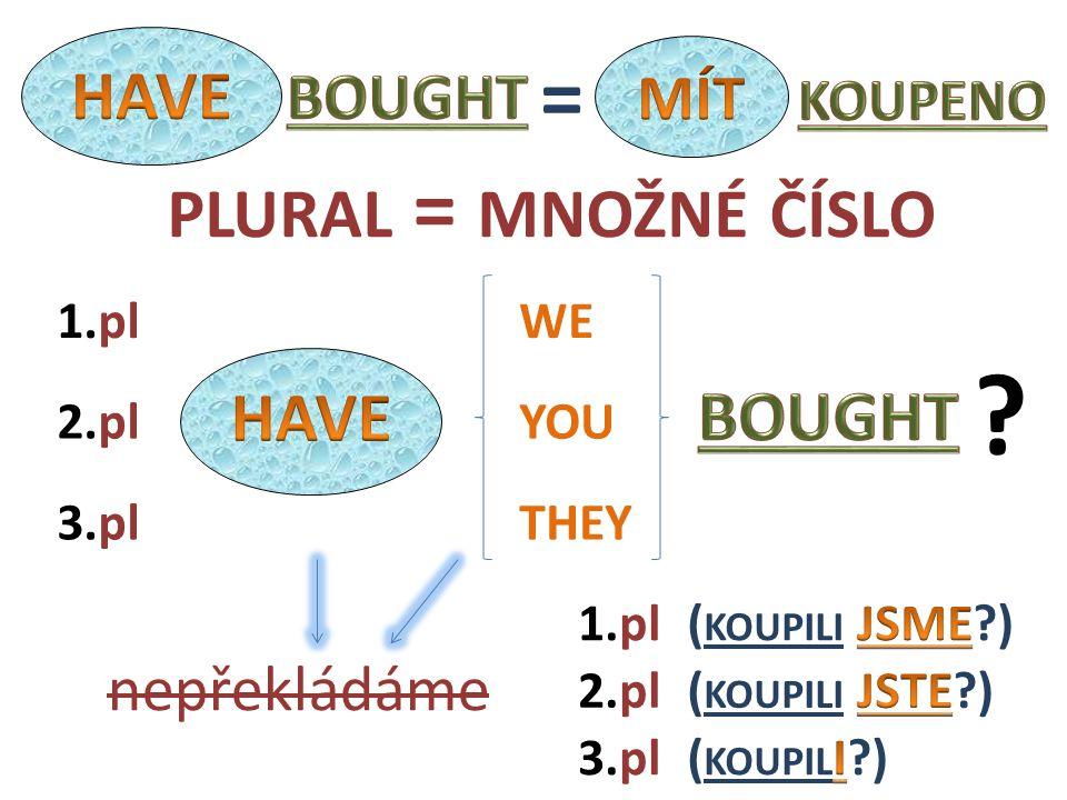 WE THEY YOU2.pl nepřekládáme 1.pl 3.pl 1.pl 3.pl 2.pl ? PLURAL = MNOŽNÉ ČÍSLO =