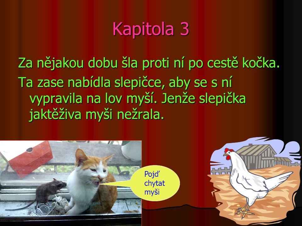 Kapitola 3 Za nějakou dobu šla proti ní po cestě kočka.