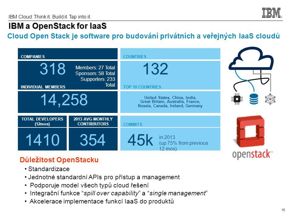 16 IBM Cloud: Think it.Build it. Tap into it.