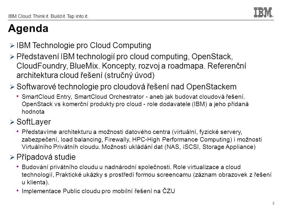 13 IBM Cloud: Think it.Build it. Tap into it.