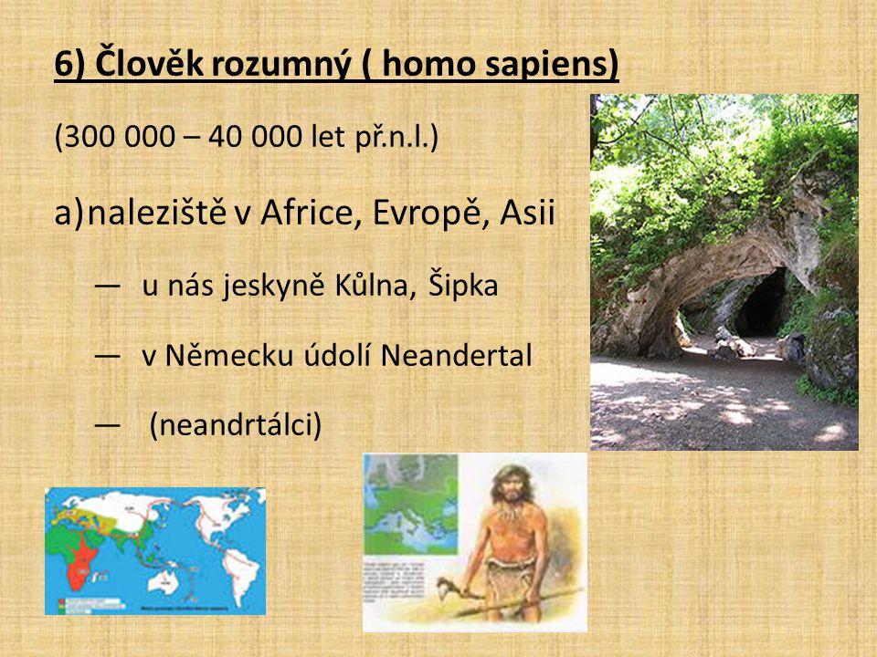 6) Člověk rozumný ( homo sapiens) (300 000 – 40 000 let př.n.l.) a)naleziště v Africe, Evropě, Asii ―u nás jeskyně Kůlna, Šipka ―v Německu údolí Neand