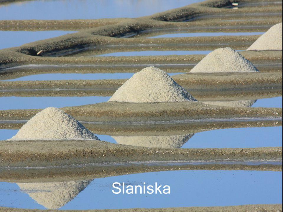 Sůl může pocházet také ze solného dolu