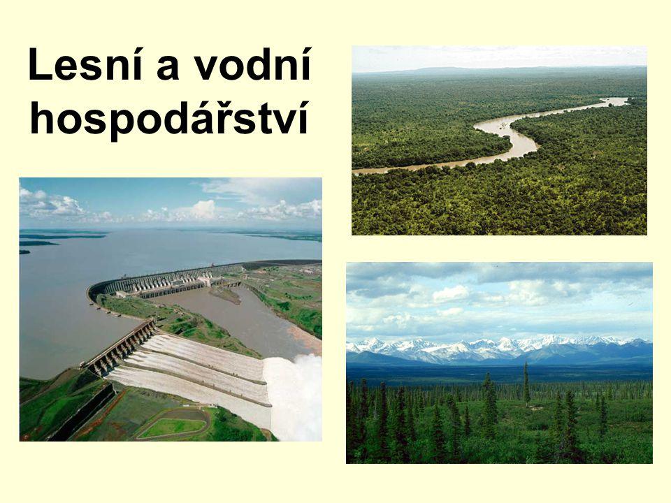 Obsah 1.Lesní hospodářství 2.Vodní hospodářství 3.Otázky a úkoly