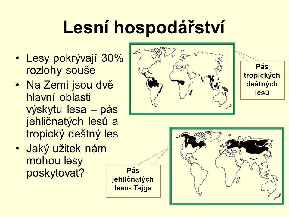 Lesní hospodářství Lesy pokrývají 30% rozlohy souše Na Zemi jsou dvě hlavní oblasti výskytu lesa – pás jehličnatých lesů a tropický deštný les Jaký už
