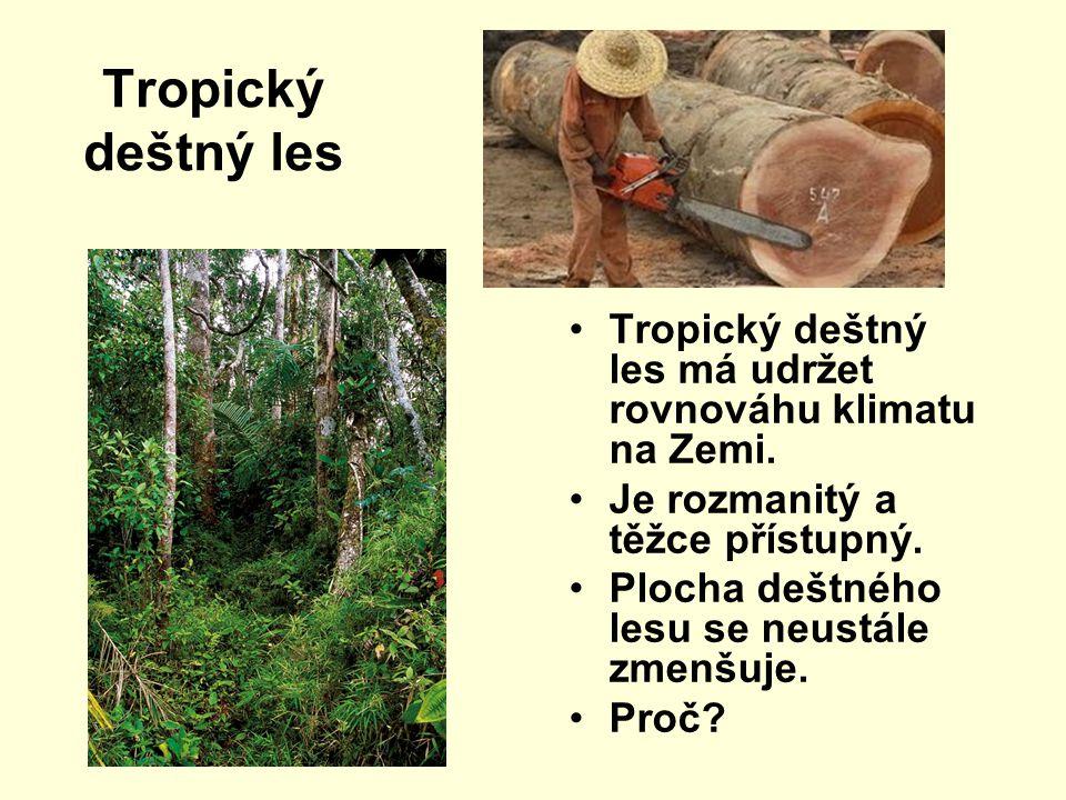 Tropický deštný les Tropický deštný les má udržet rovnováhu klimatu na Zemi. Je rozmanitý a těžce přístupný. Plocha deštného lesu se neustále zmenšuje