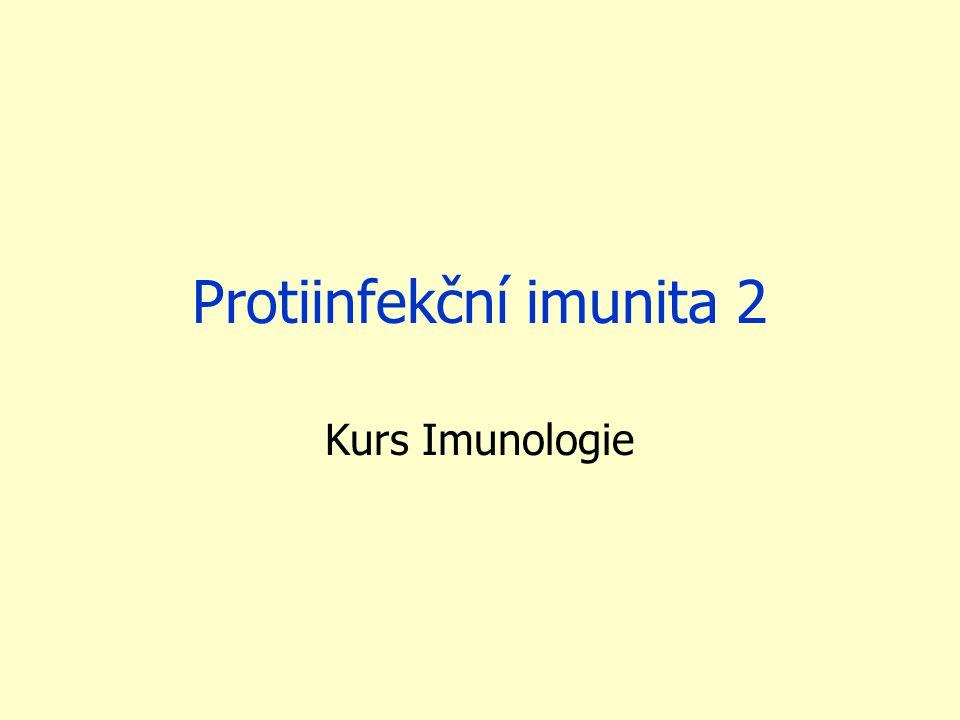 Nespecifická imunita protozoa - fagocytóza makrofágy (často problémy s intracelulárním přežíváním)