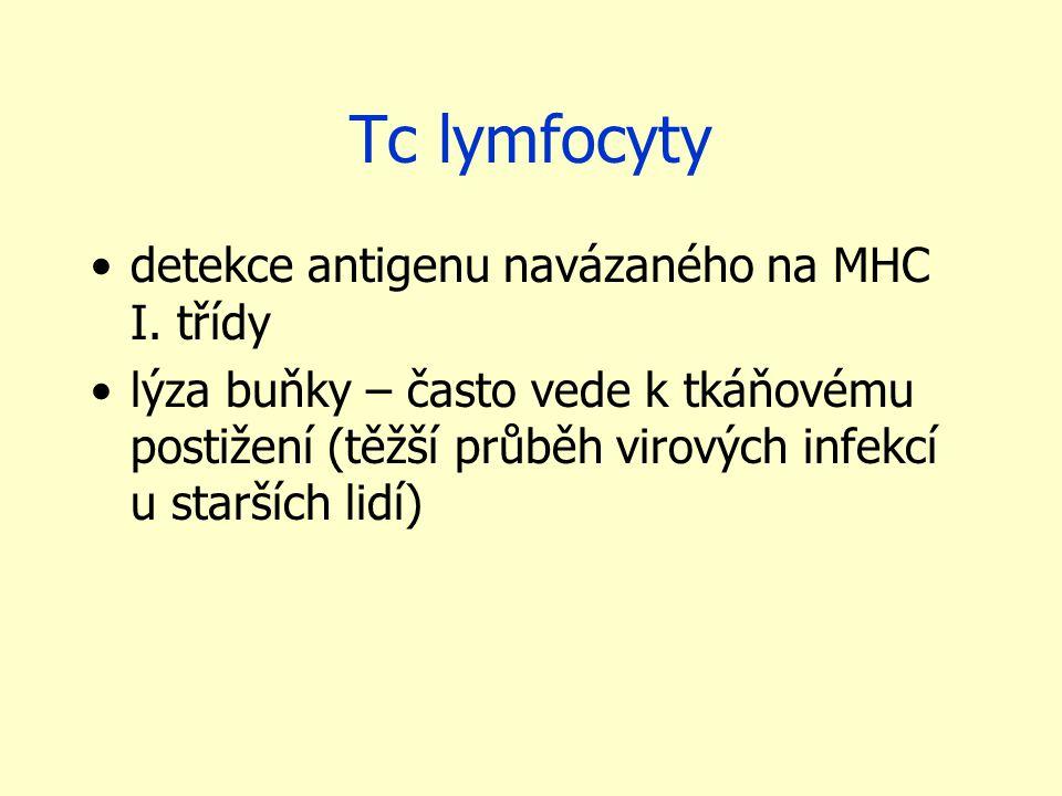 Tc lymfocyty detekce antigenu navázaného na MHC I. třídy lýza buňky – často vede k tkáňovému postižení (těžší průběh virových infekcí u starších lidí)