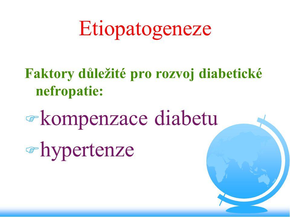 Etiopatogeneze Faktory důležité pro rozvoj diabetické nefropatie: F kompenzace diabetu F hypertenze