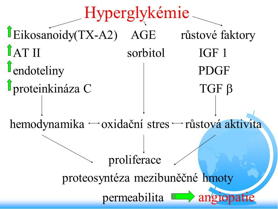 Hyperglykémie Eikosanoidy(TX-A2) AGE růstové faktory AT II sorbitol IGF 1 endoteliny PDGF proteinkináza C TGF  hemodynamika oxidační stres růstová ak