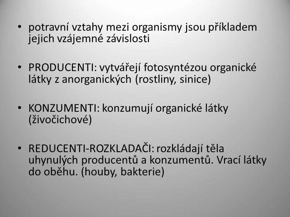 potravní řetězec POTRAVNÍ PYRAMIDA Zdroj: www.teepek.cz,www.teepek.cz www. leccos.com
