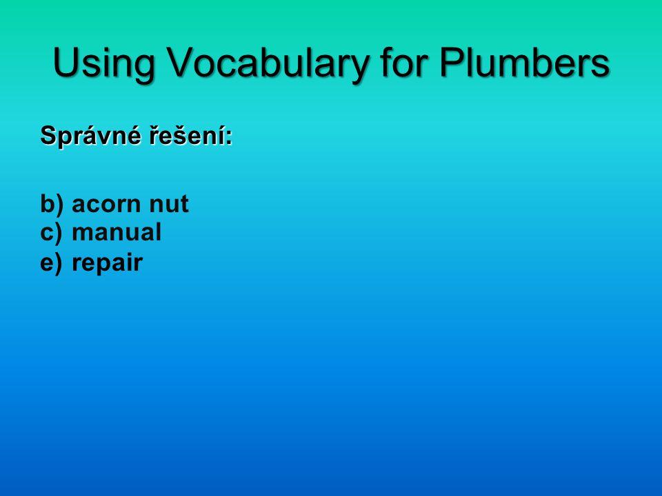 Using Vocabulary for Plumbers 1.Uveď alespoň 5 slovíček označujících nářadí.