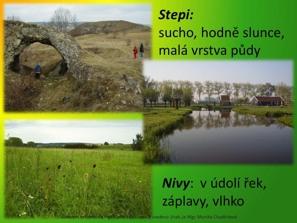 Stepi: sucho, hodně slunce, malá vrstva půdy Nivy: v údolí řek, záplavy, vlhko Autorem materiálu a všech jeho částí, není-li uvedeno jinak, je Mgr.