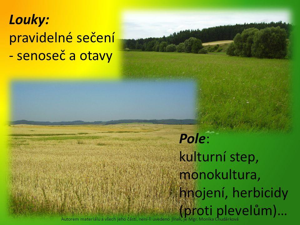Louky: pravidelné sečení - senoseč a otavy Pole: kulturní step, monokultura, hnojení, herbicidy (proti plevelům)… Autorem materiálu a všech jeho částí, není-li uvedeno jinak, je Mgr.
