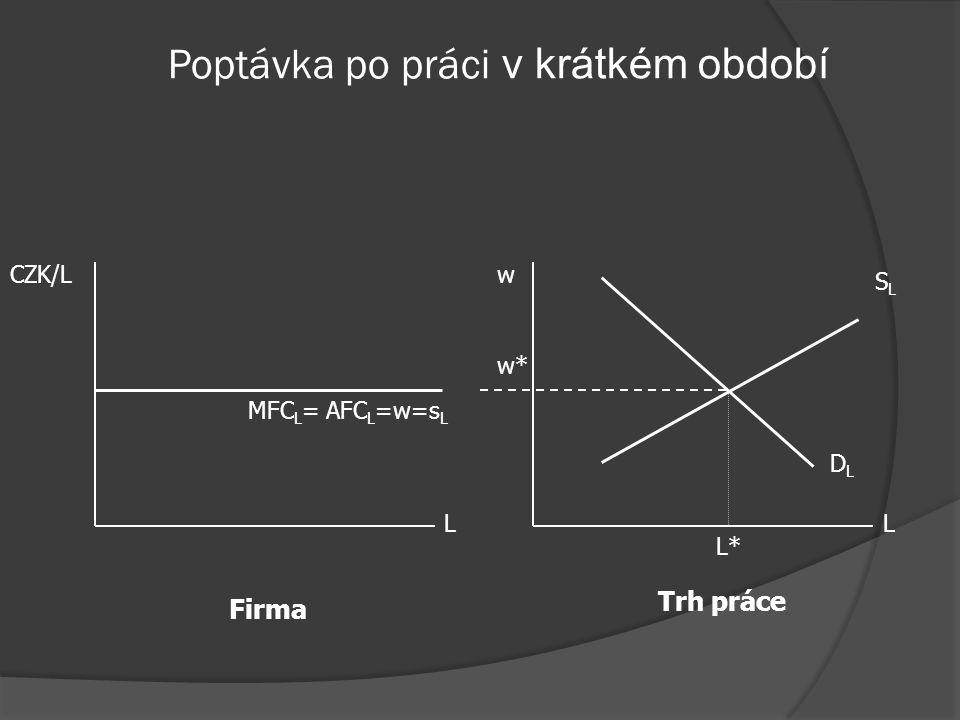 Poptávka na doko. trhu práce  Trh práce: DoKo.  Trh produkce: DoKo. – konstantní MR