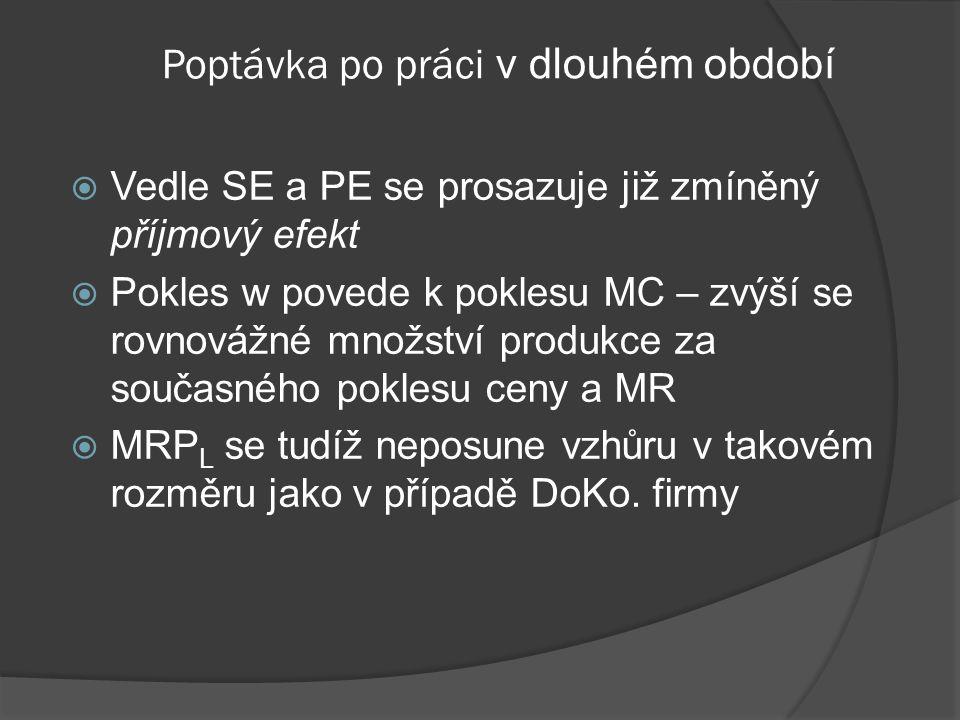 MRP L ARP L L MRP L ARP L L MRP L Poptávka po práci v krátkém období DLDL DLDL Firma na DoKo. trhu finální produkce Firma na NedoKo. trhu finální prod