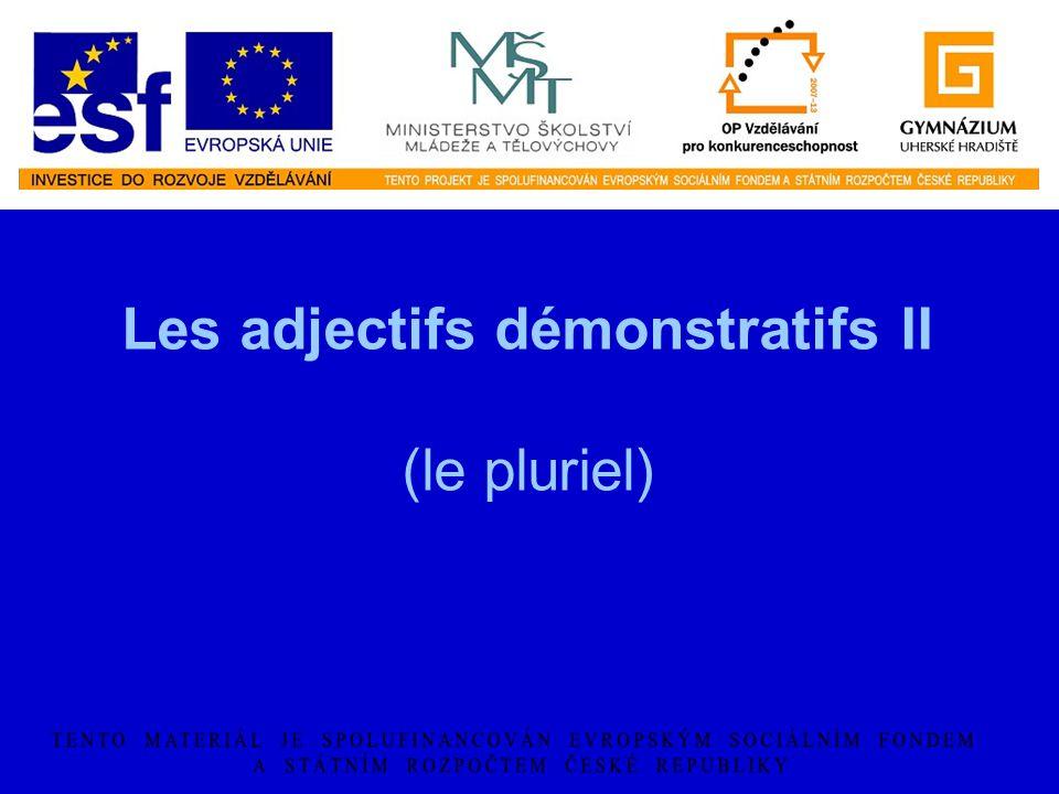 Les adjectifs démonstratifs II (le pluriel)