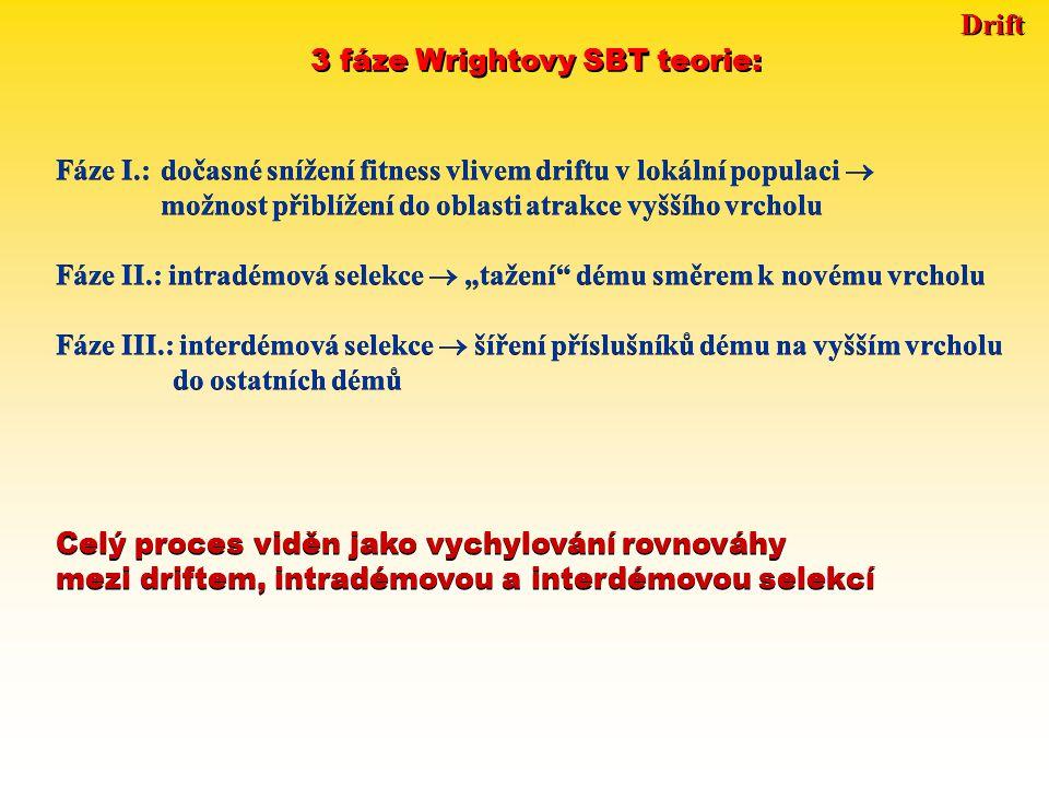 """Drift 3 fáze Wrightovy SBT teorie: Fáze I.:dočasné snížení fitness vlivem driftu v lokální populaci  možnost přiblížení do oblasti atrakce vyššího vrcholu Fáze II.: intradémová selekce  """"tažení dému směrem k novému vrcholu Fáze III.: interdémová selekce  šíření příslušníků dému na vyšším vrcholu do ostatních démů Fáze I.:dočasné snížení fitness vlivem driftu v lokální populaci  možnost přiblížení do oblasti atrakce vyššího vrcholu Fáze II.: intradémová selekce  """"tažení dému směrem k novému vrcholu Fáze III.: interdémová selekce  šíření příslušníků dému na vyšším vrcholu do ostatních démů Celý proces viděn jako vychylování rovnováhy mezi driftem, intradémovou a interdémovou selekcí Celý proces viděn jako vychylování rovnováhy mezi driftem, intradémovou a interdémovou selekcí"""