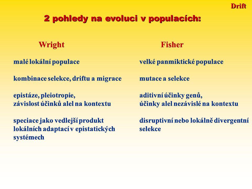 Drift 2 pohledy na evoluci v populacích: Wright Fisher malé lokální populacevelké panmiktické populace kombinace selekce, driftu a migracemutace a selekce epistáze, pleiotropie,aditivní účinky genů, závislost účinků alel na kontextuúčinky alel nezávislé na kontextu speciace jako vedlejší produktdisruptivní nebo lokálně divergentní lokálních adaptací v epistatickýchselekce systémech malé lokální populacevelké panmiktické populace kombinace selekce, driftu a migracemutace a selekce epistáze, pleiotropie,aditivní účinky genů, závislost účinků alel na kontextuúčinky alel nezávislé na kontextu speciace jako vedlejší produktdisruptivní nebo lokálně divergentní lokálních adaptací v epistatickýchselekce systémech
