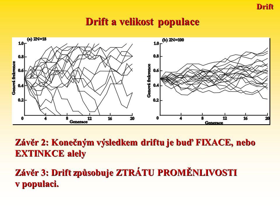 Drift Drift a velikost populace Závěr 4: PRAVDĚPODOBNOST FIXACE alely v generaci t je rovna její frekvenci v generaci t.
