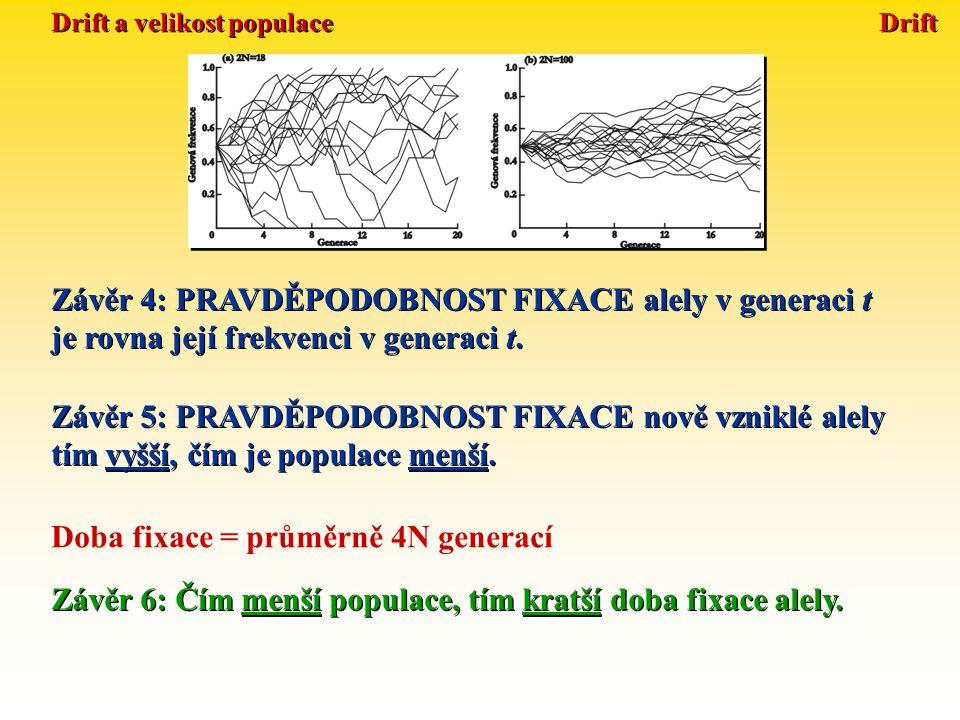 Drift Doba fixace: t = 4N e Efektivní velikost populace Efektivní velikost populace