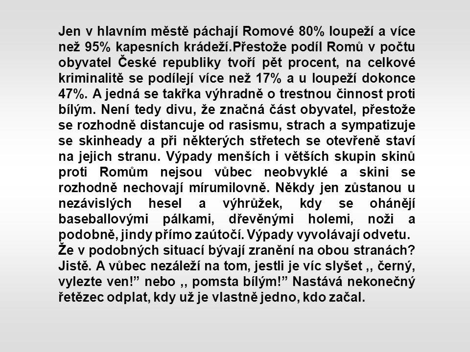 Jen v hlavním městě páchají Romové 80% loupeží a více než 95% kapesních krádeží.Přestože podíl Romů v počtu obyvatel České republiky tvoří pět procent, na celkové kriminalitě se podílejí více než 17% a u loupeží dokonce 47%.