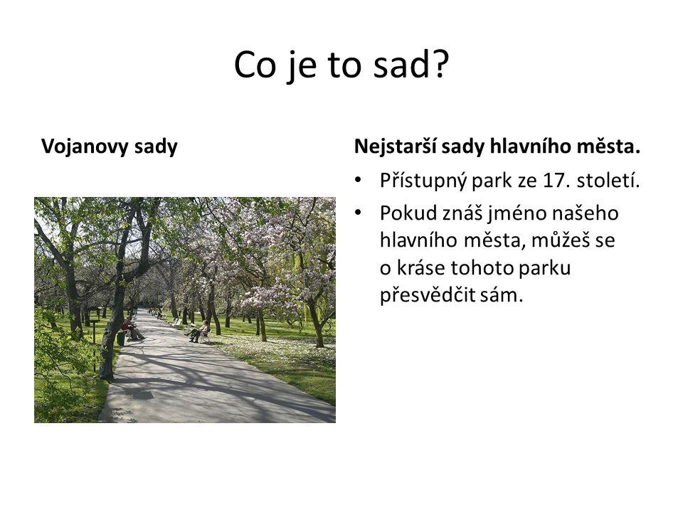 Co je to sad? Vojanovy sadyNejstarší sady hlavního města. Přístupný park ze 17. století. Pokud znáš jméno našeho hlavního města, můžeš se o kráse toho