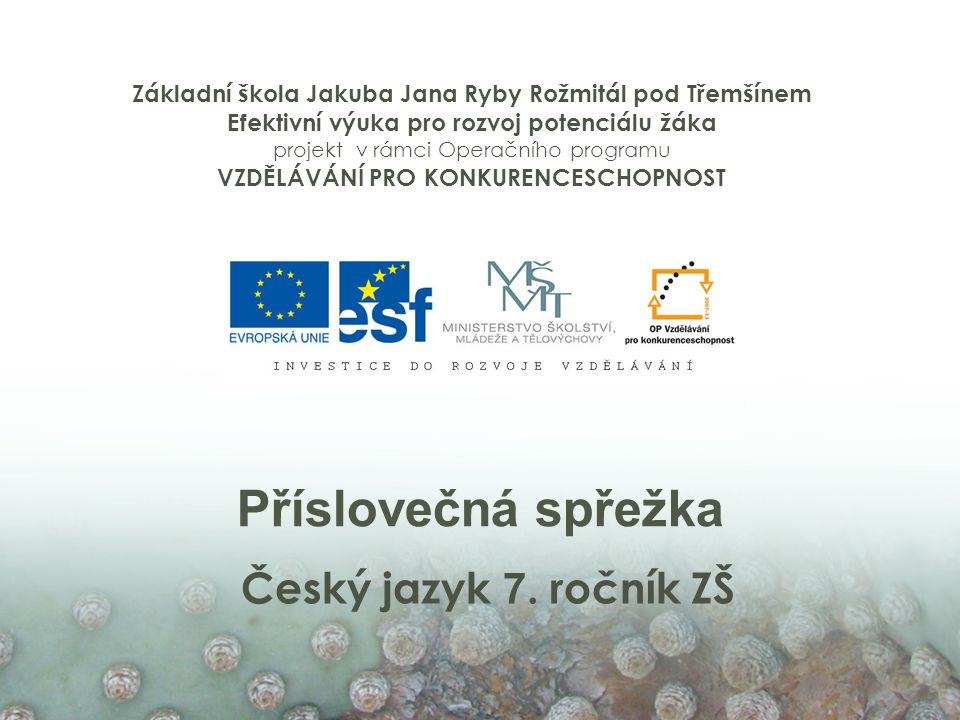 Příslovečná spřežka Český jazyk 7.
