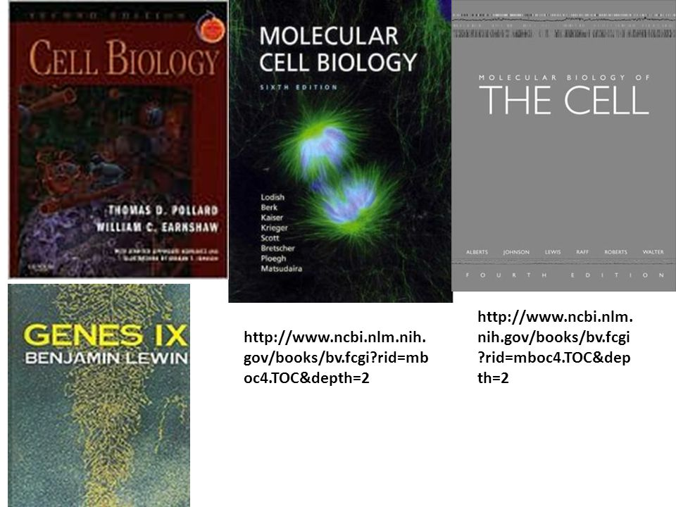 http://www.ncbi.nlm. nih.gov/books/bv.fcgi ?rid=mboc4.TOC&dep th=2