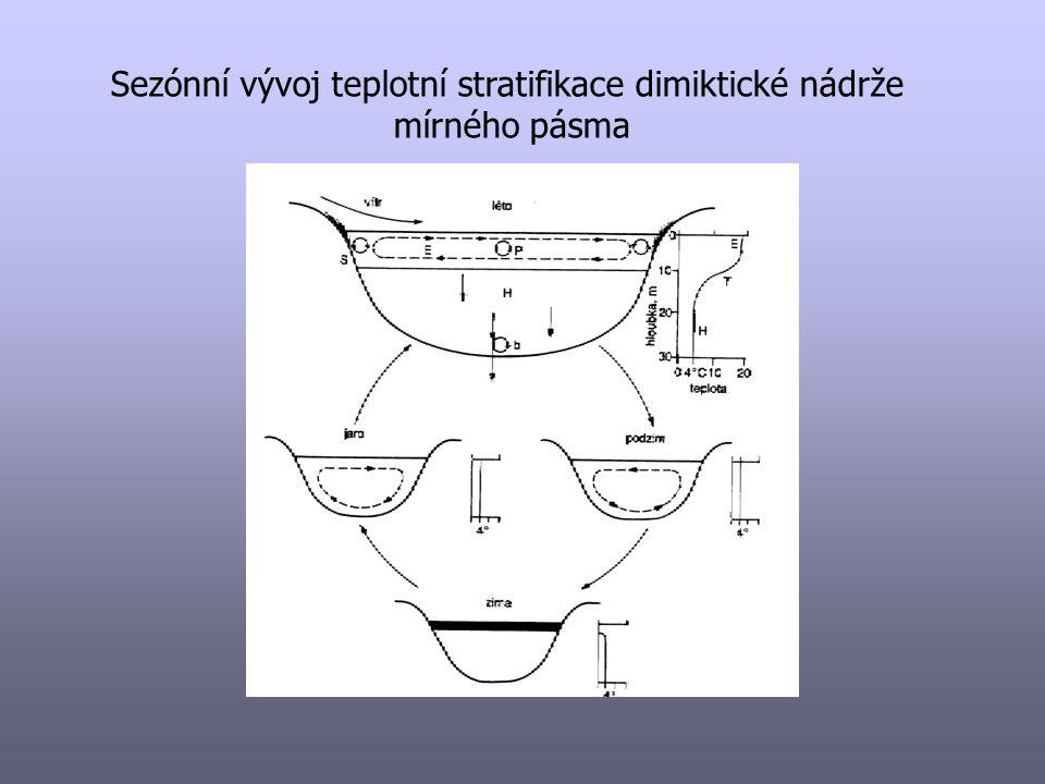 Roční cyklus – dimiktické jezero/nádrž A jarní míchání B začátek letní stratifikace C vrchol letní stratifikace D podzimní míchání E zimní (převrácená) strat.