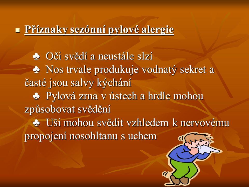 Příznaky Podle čeho poznáte, že trpíte sennou rýmou.