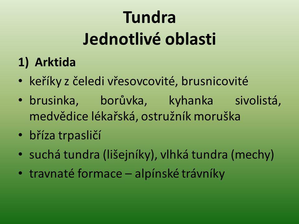 Tundra Jednotlivé oblasti 1)Arktida keříky z čeledi vřesovcovité, brusnicovité brusinka, borůvka, kyhanka sivolistá, medvědice lékařská, ostružník mor