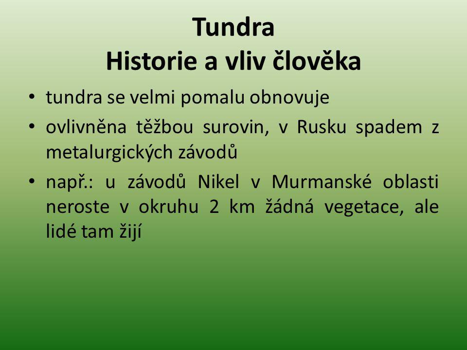 Tundra Historie a vliv člověka tundra se velmi pomalu obnovuje ovlivněna těžbou surovin, v Rusku spadem z metalurgických závodů např.: u závodů Nikel
