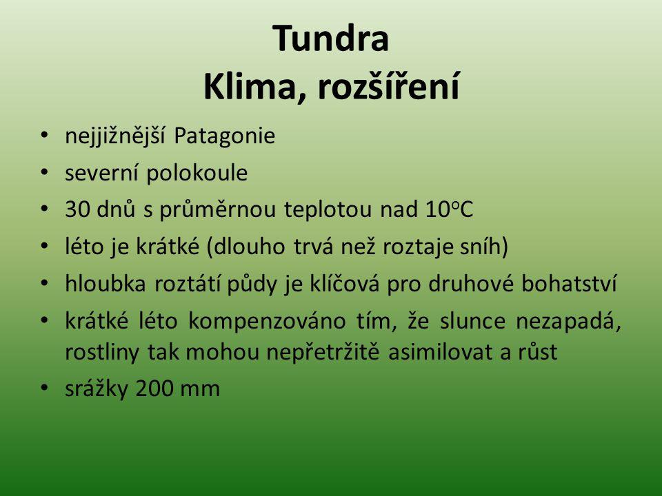 Tundra Historie a vliv člověka tundra se velmi pomalu obnovuje ovlivněna těžbou surovin, v Rusku spadem z metalurgických závodů např.: u závodů Nikel v Murmanské oblasti neroste v okruhu 2 km žádná vegetace, ale lidé tam žijí