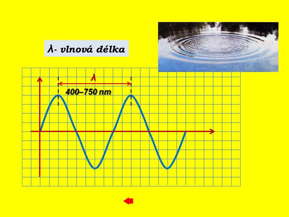 λ λ - vlnová délka 400–750 nm