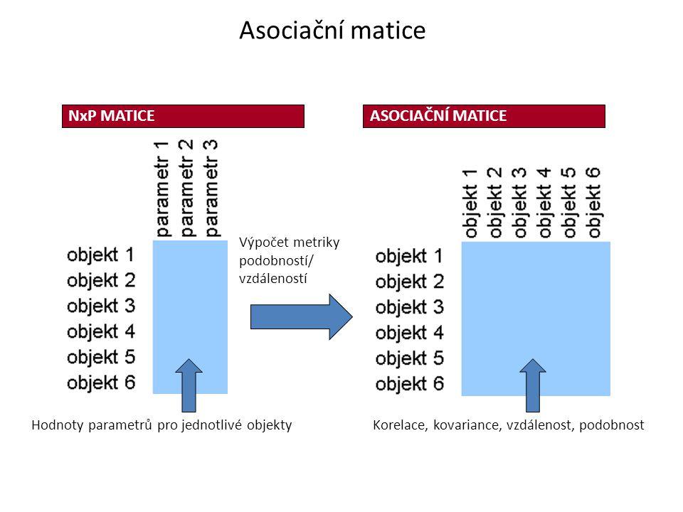 Hodnoty parametrů pro jednotlivé objekty NxP MATICEASOCIAČNÍ MATICE Korelace, kovariance, vzdálenost, podobnost Výpočet metriky podobností/ vzdálenost