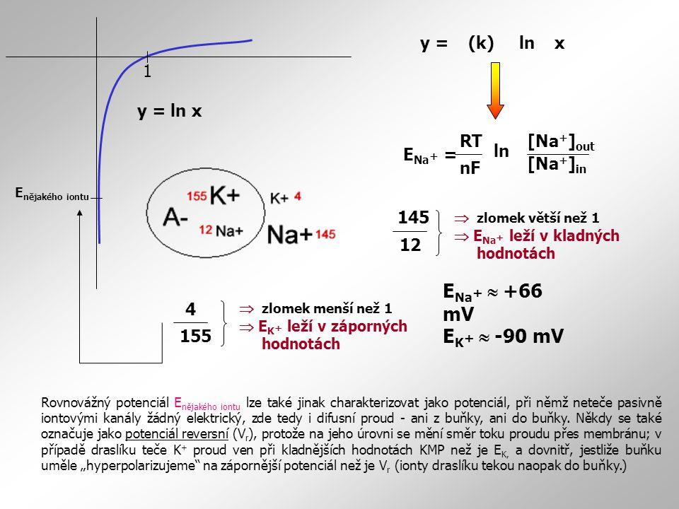 E Na + = [Na + ] out [Na + ] in RT nF ln 1 y = ln x y = (k) ln x Rovnovážný potenciál E nějakého iontu lze také jinak charakterizovat jako potenciál,
