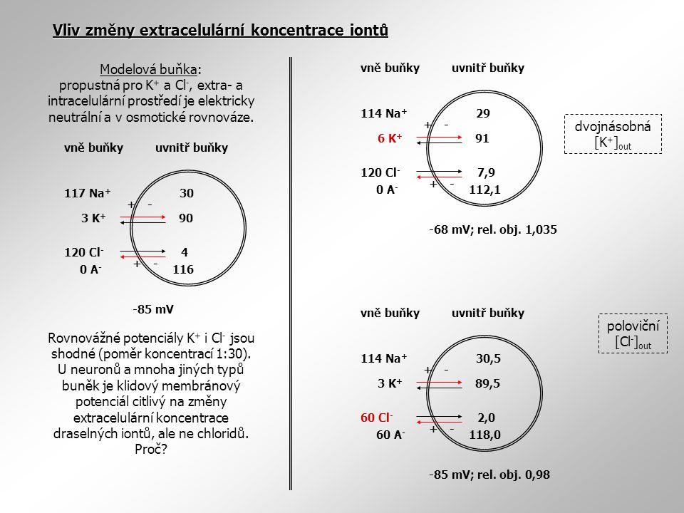 117 Na + 3 K + 120 Cl - 0 A - 30 90 4 116 +- +- -85 mV vně buňkyuvnitř buňky 114 Na + 6 K + 120 Cl - 0 A - 29 91 7,9 112,1 +- +- -68 mV; rel. obj. 1,0