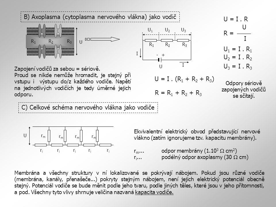 B) Axoplasma (cytoplasma nervového vlákna) jako vodič RR RR RR I U +-U1U1 U2U2 U3U3 I Zapojení vodičů za sebou = sériově. Proud se nikde nemůže