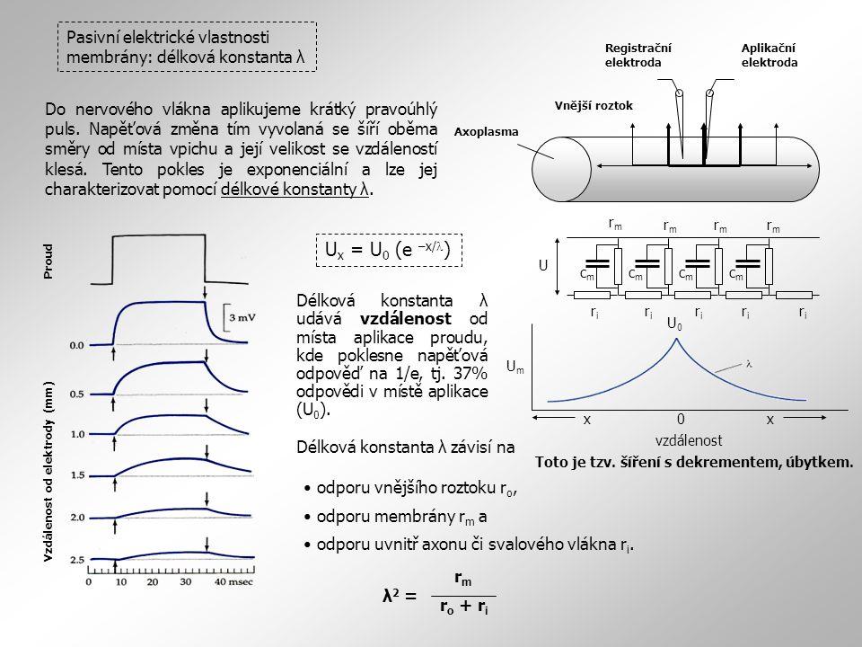 Proud Vzdálenost od elektrody (mm) Pasivní elektrické vlastnosti membrány: délková konstanta λ rmrm rmrm rmrm rmrm riri riri riri riri riri U cmcm cmc