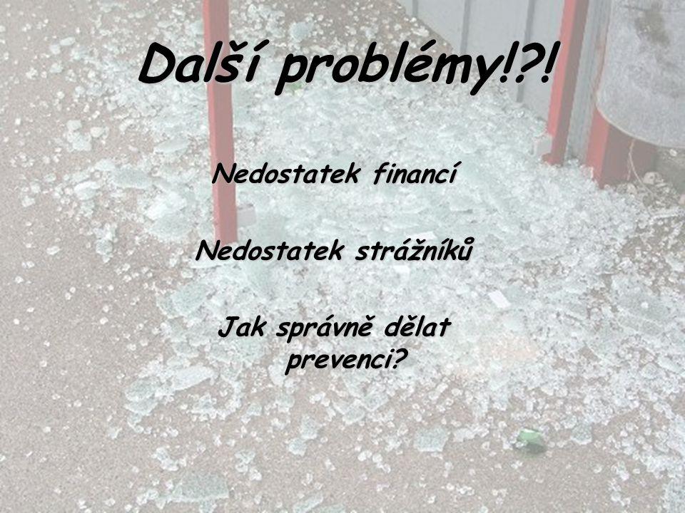 Další problémy!?! Nedostatek financí Nedostatek strážníků Jak správně dělat prevenci?