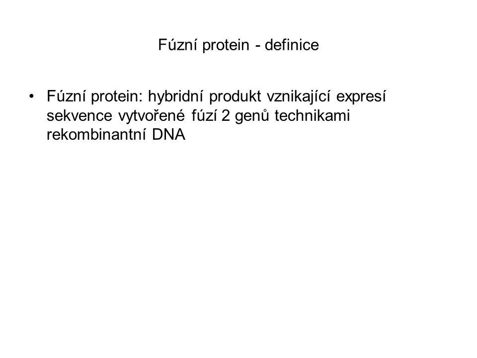 Fúzní protein - definice Fúzní protein: hybridní produkt vznikající expresí sekvence vytvořené fúzí 2 genů technikami rekombinantní DNA
