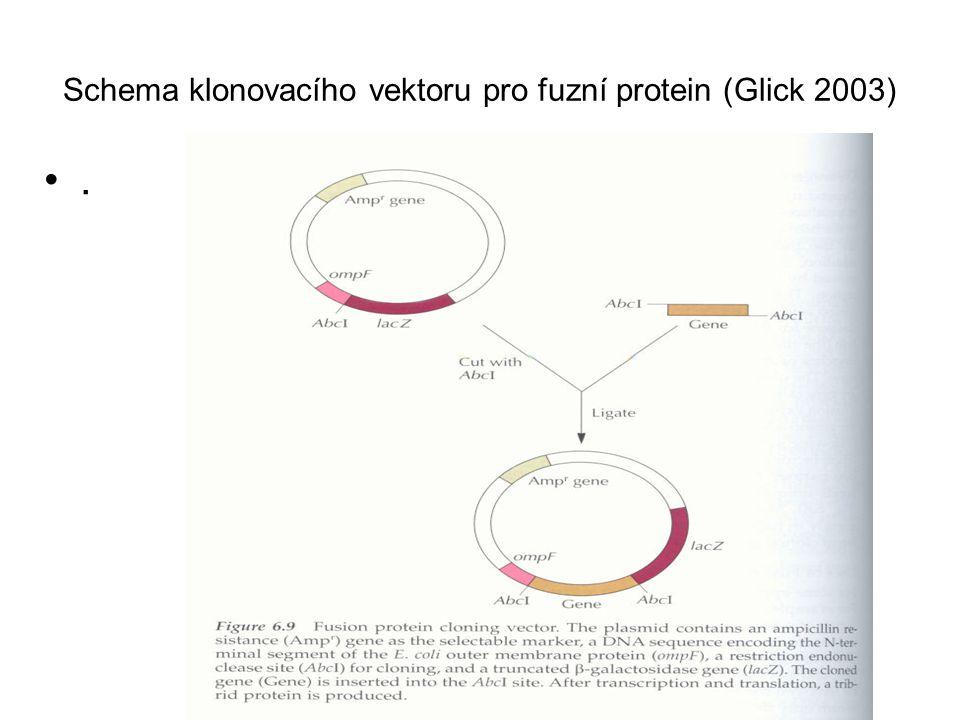 Fúzní protein jako finální produkt Může být vhodný pro další aplikace (např.