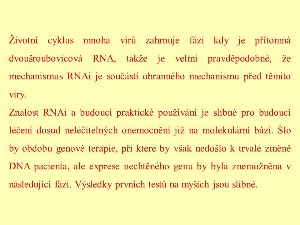 Životní cyklus mnoha virů zahrnuje fázi kdy je přítomná dvoušroubovicová RNA, takže je velmi pravděpodobné, že mechanismus RNAi je součástí obranného